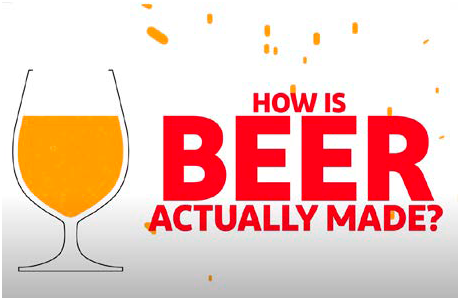 how is beer actually made.png